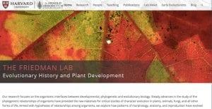 Friedman Lab has a new website!