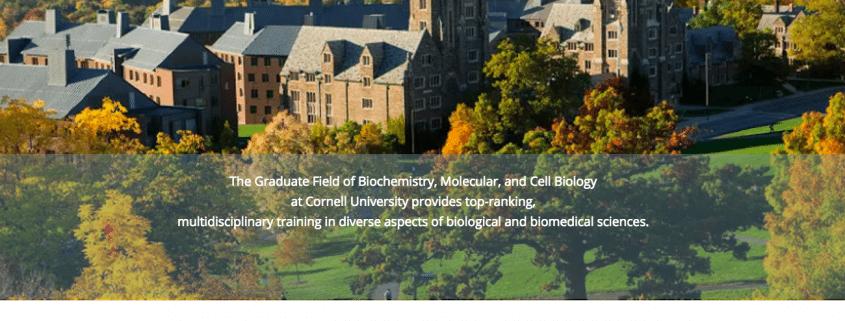 Cornell BMCB