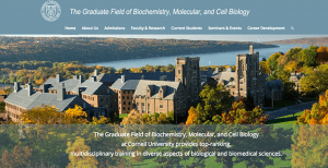 The Graduate Field of Biochemistry, Molecular, and Cell Biology at Cornell University has a newly redesigned website!