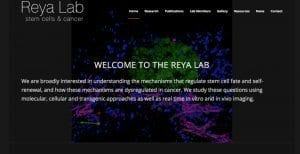 The Reya Lab has a new website!