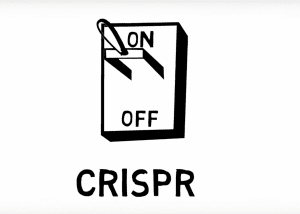 Database Developed to Aggregate Data on Anti-CRISPR Proteins