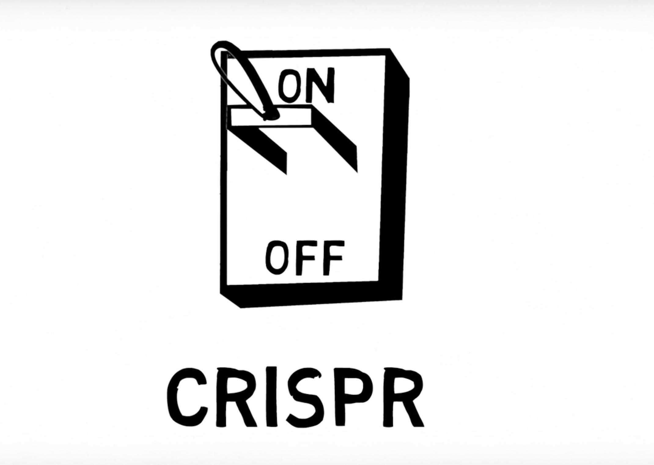 Anti-CRISPR proteins