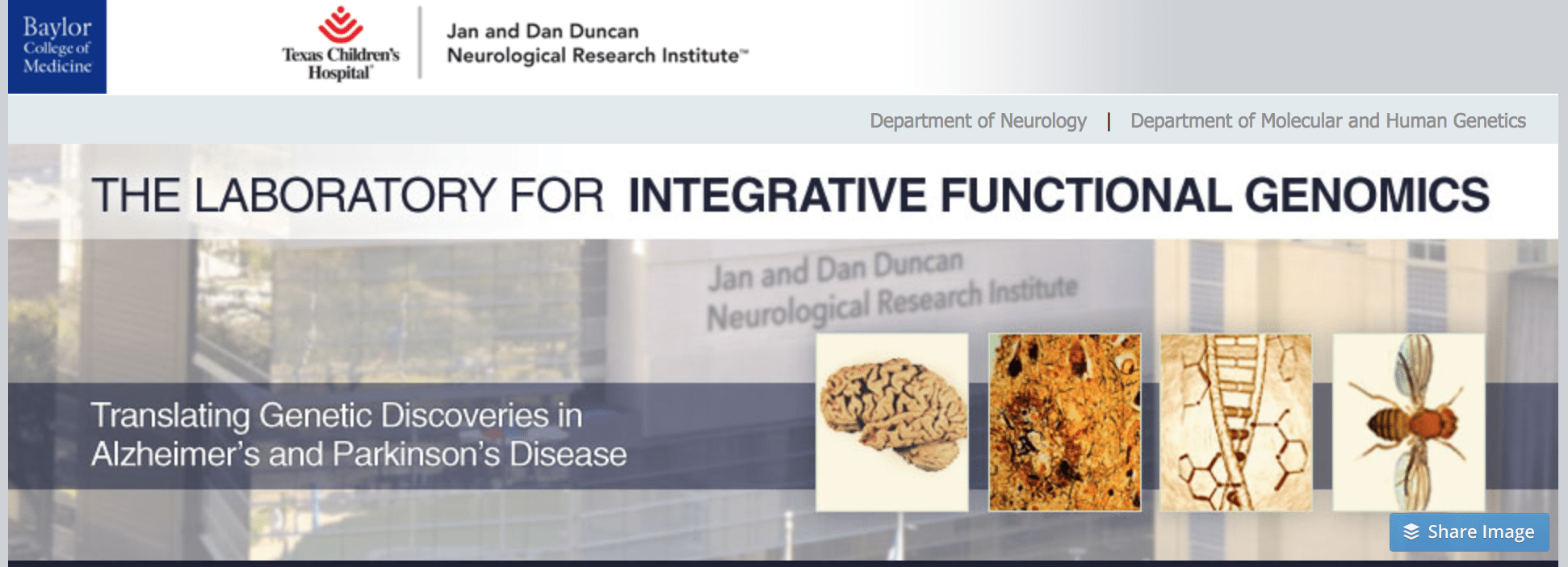 Laboratory for Integrative Functional Genomics