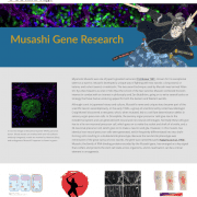 Musashi Gene Research homepage