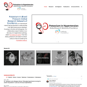 Potassium in Blood Pressure Global Research Network