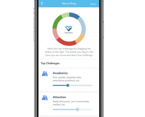 MentorHub App