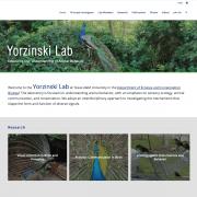 Yorzinski Lab