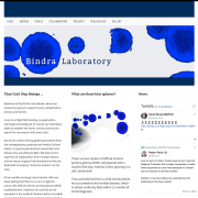 Bindra Lab