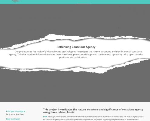 Rethinking Conscious Agency